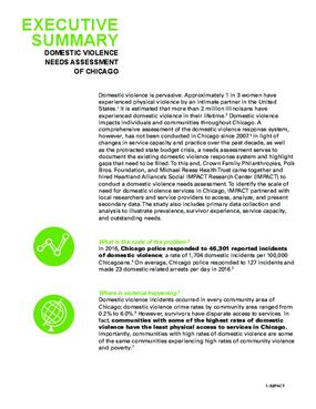 Executive Summary (DV Landscape Report)
